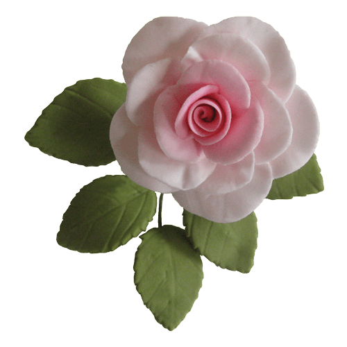 Single Traditional Sugar Rose