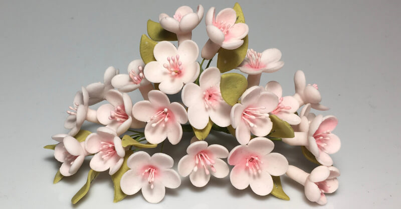 How to Dry Sugar Paste Flowers